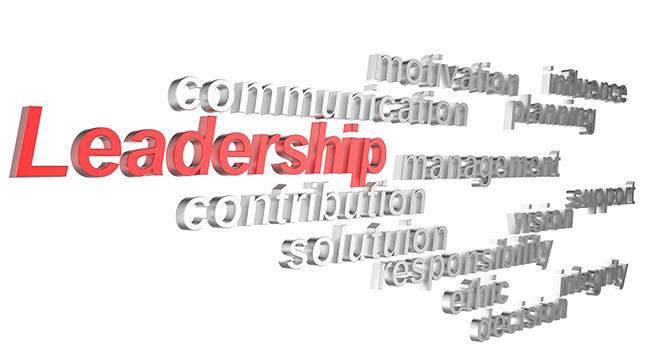 4_3d-leadership
